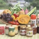 野菜と加工品